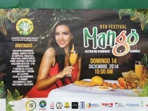 Mango Festival poster