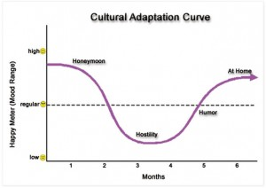 Proposed stages of cultural adaptation (taken from xx)